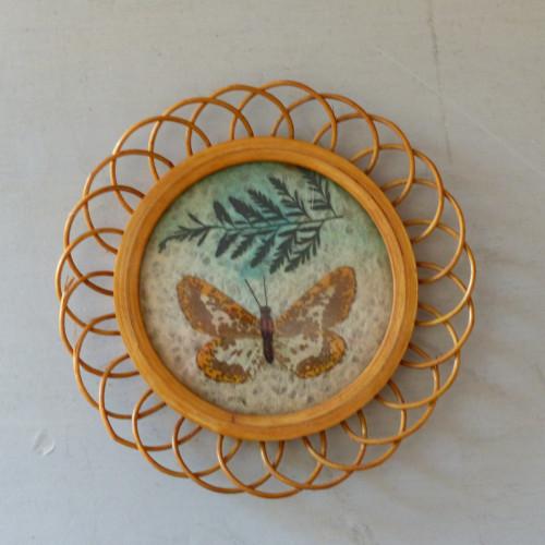 Petit cadre papillon tacheté marron et blanc en rotin