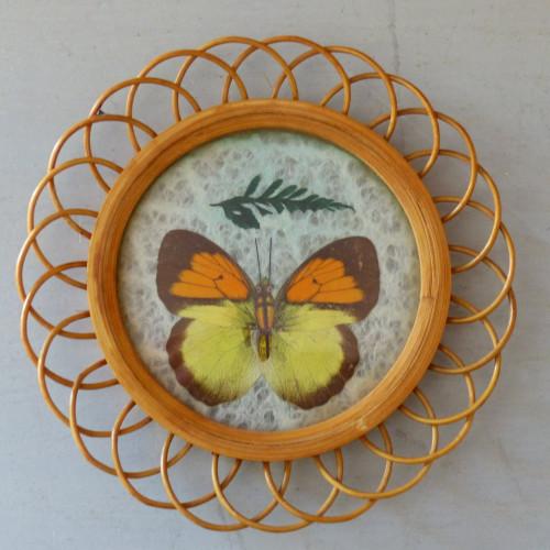 Petit cadre papillon orange et jaune en rotin