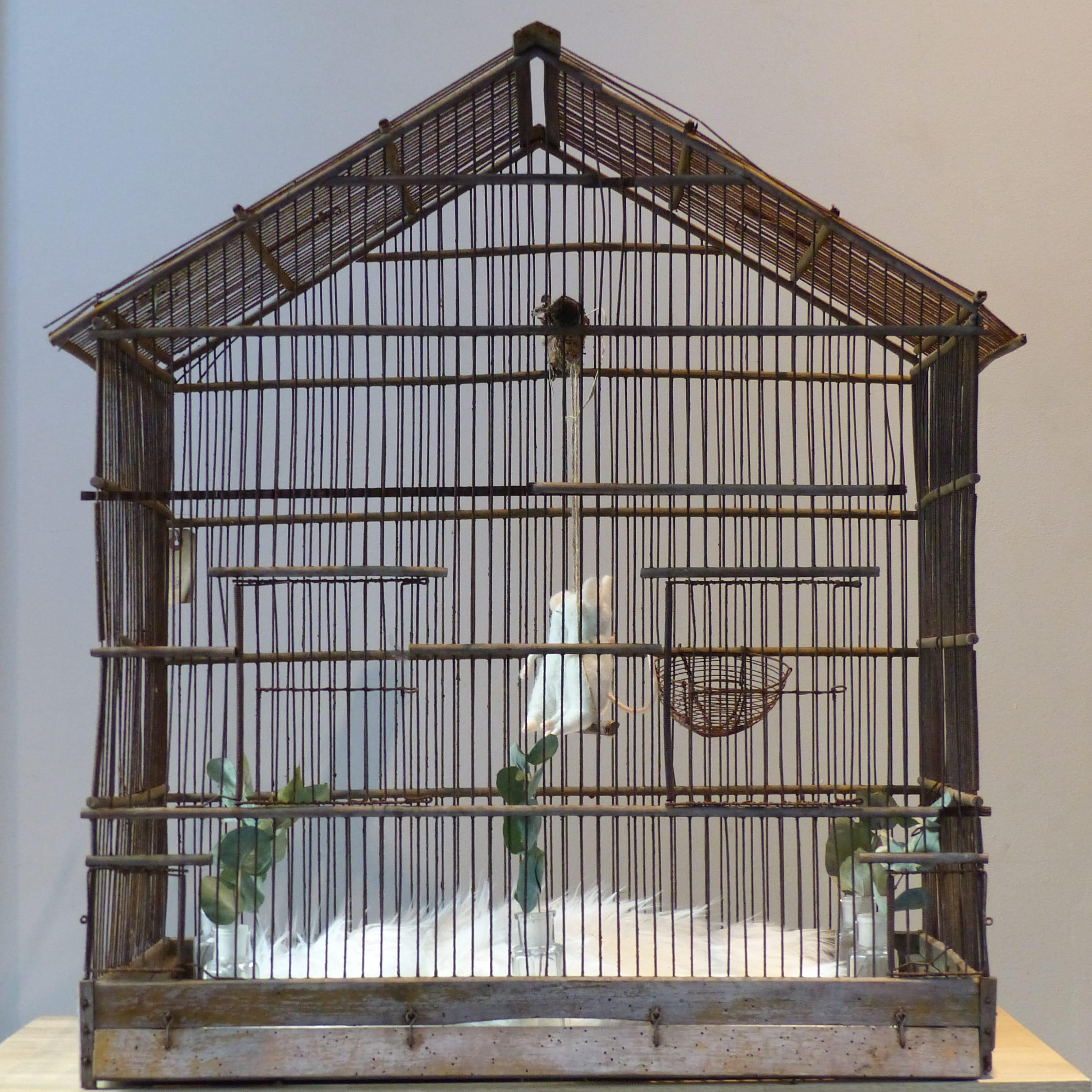 ancienne cage oiseaux en bois et grillage lignedebrocante brocante en ligne chine pour vous. Black Bedroom Furniture Sets. Home Design Ideas