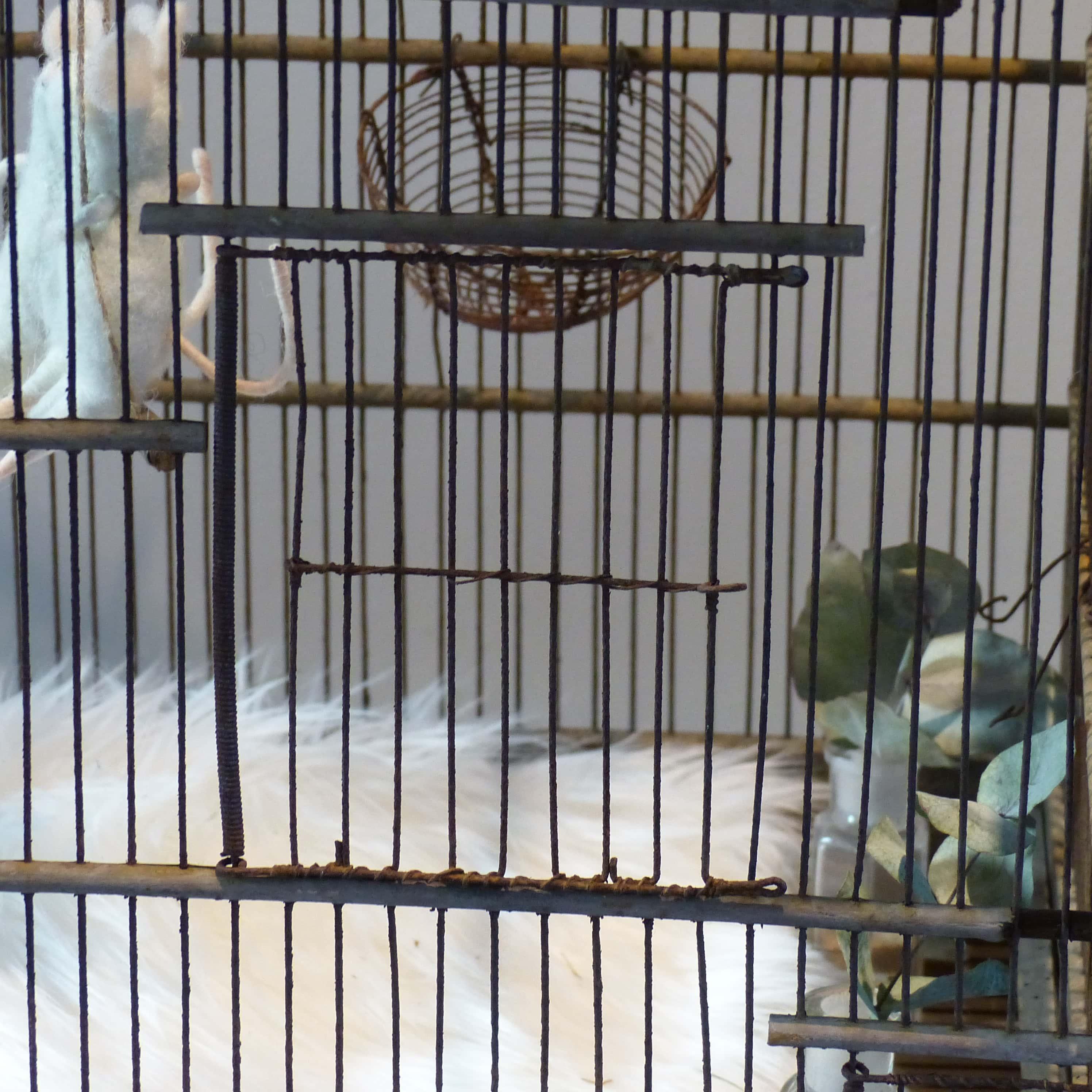 Ancienne cage oiseaux en bois et grillage - Decorer une cage a oiseaux ...
