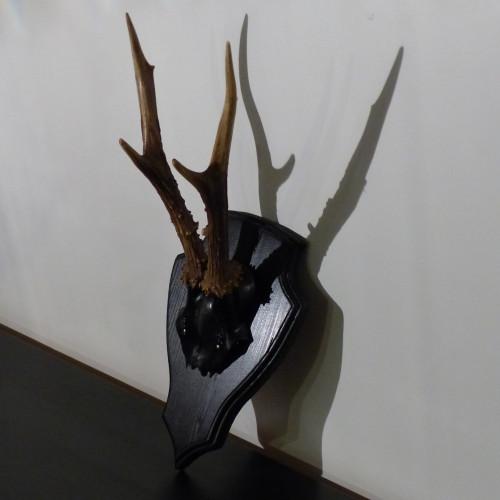 Petit trophée de chasse déco noir et couleur naturelle