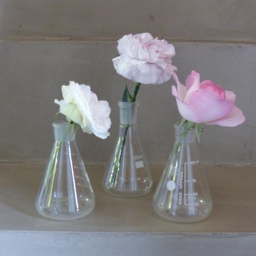 Verrerie de laboratoire - Ensemble de 3 petites fioles