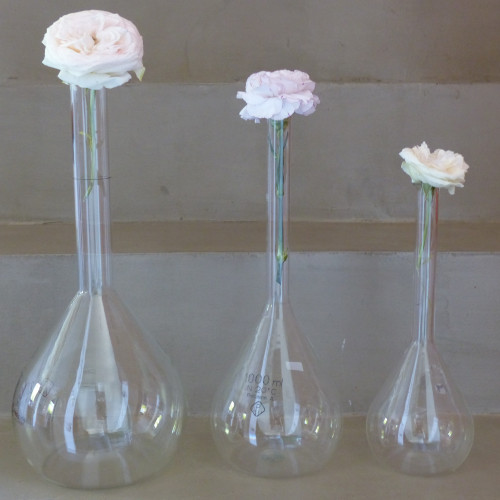 Verrerie de laboratoire - Ensemble de 3 fioles de tailles décroissantes