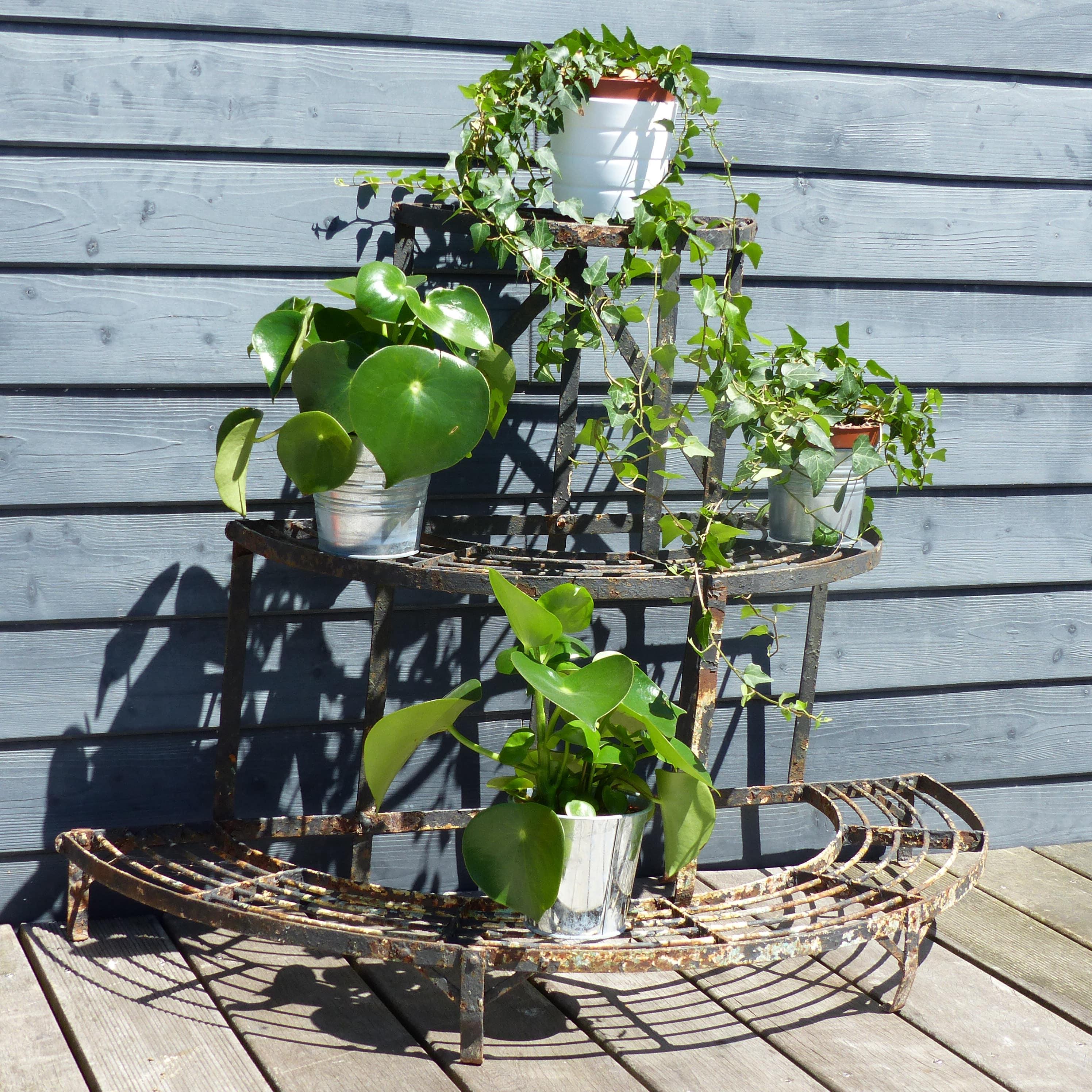 Porte plantes ancien en fer forg lignedebrocante for Porte plantes dinterieur